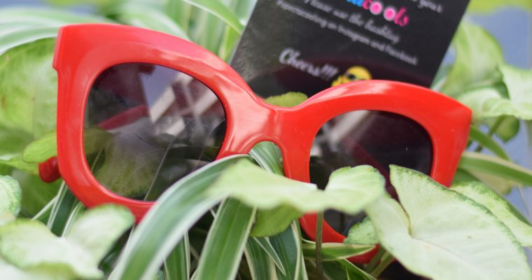 Spectacools eye-wear review